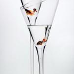 fot_krzysztof_stos_glass_022