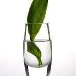 fot_krzysztof_stos_glass_047